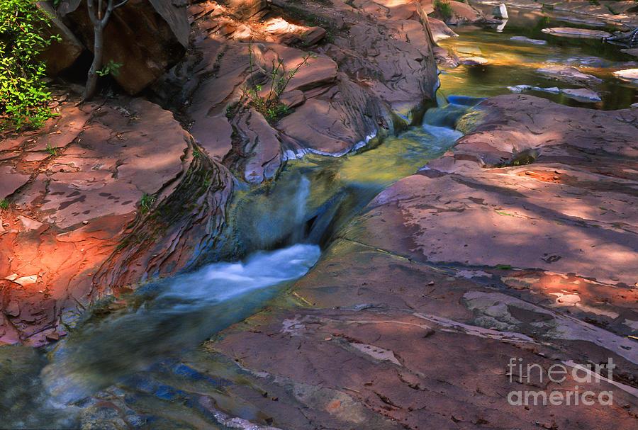 Southwest Photograph - Oak Creek Canyon Splendor by Sandra Bronstein