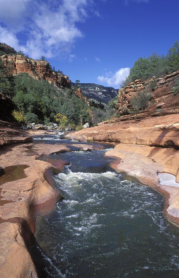 Oak Creek Flowing Through The Red Rocks Photograph