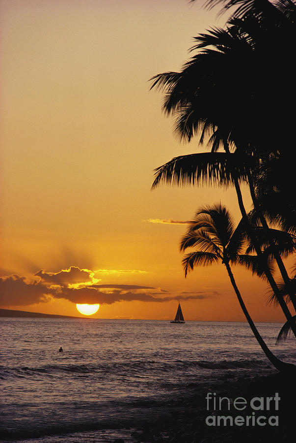 Beach Photograph - Ocean Sunset by Erik Aeder - Printscapes