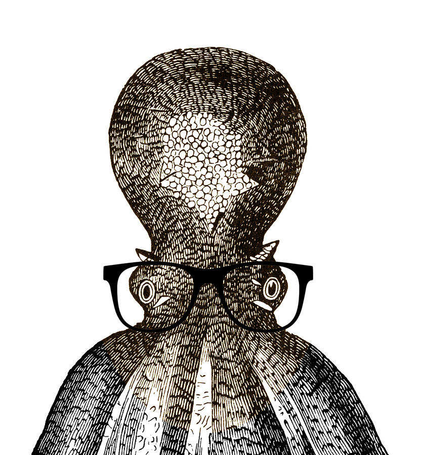 Octopus Head Drawing