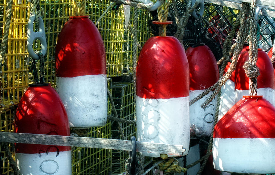 Bouys Photograph - Oh Bouy by Gina Cormier