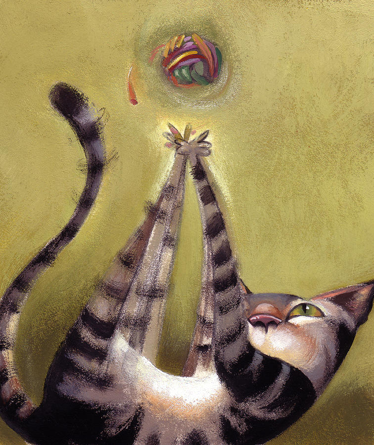 Feline Painting - Oh Boy by Barbara Hranilovich