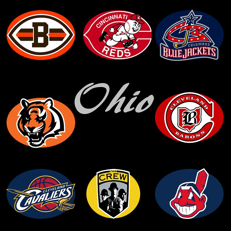 Professional Sports Teams