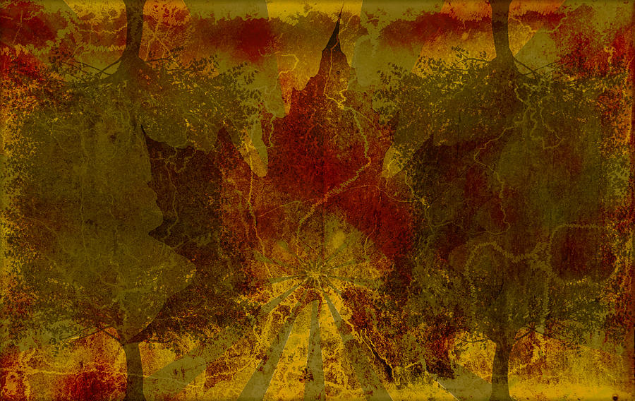 Nature Digital Art - Ok Fall by Shawn Ross