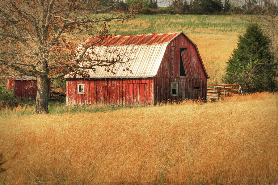 Landscape Photograph - Old Red Barn by Tamyra Ayles