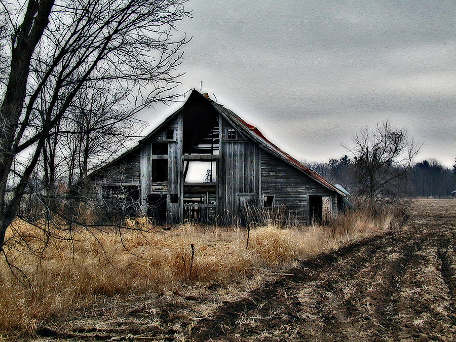 Old Shed Left By Itself Photograph