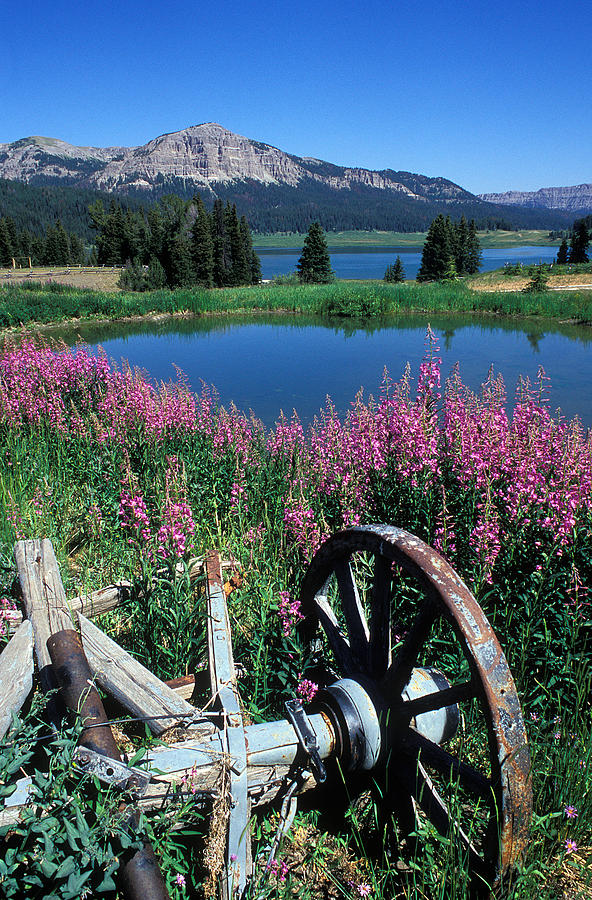 Old Wheels Photograph - Old Wheel And Brooks Lake by Kathy Yates