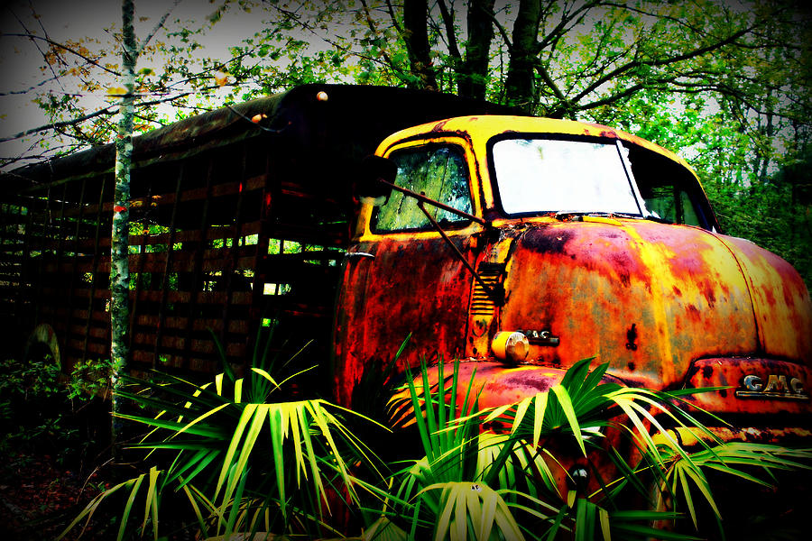 Old Photograph - Ole Cow Truck by Dana  Oliver