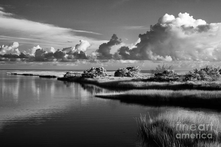 North Carolina Photograph - On The Sound Side by Dan Carmichael