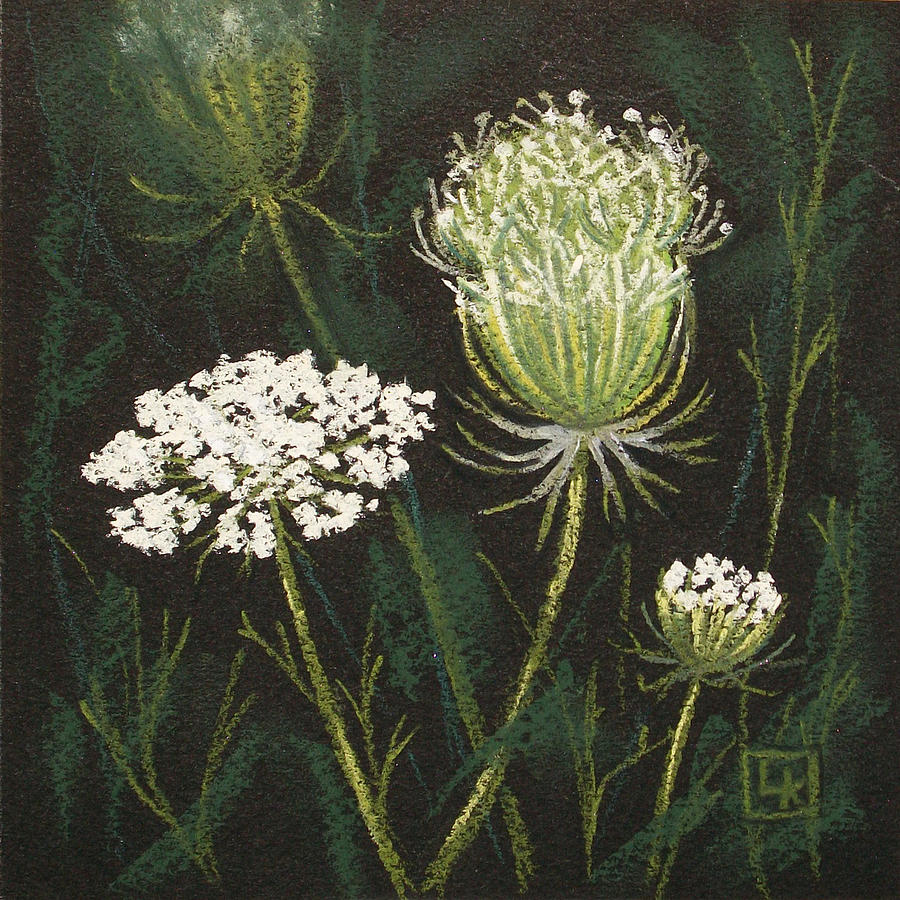 Queen Anne's Lace Pastel - Opening Lace by Lisa Kretchman