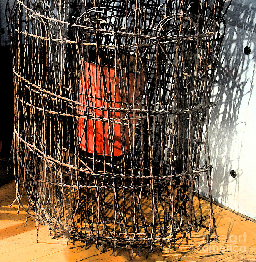 Orange In Wire Photograph by Gary Everson
