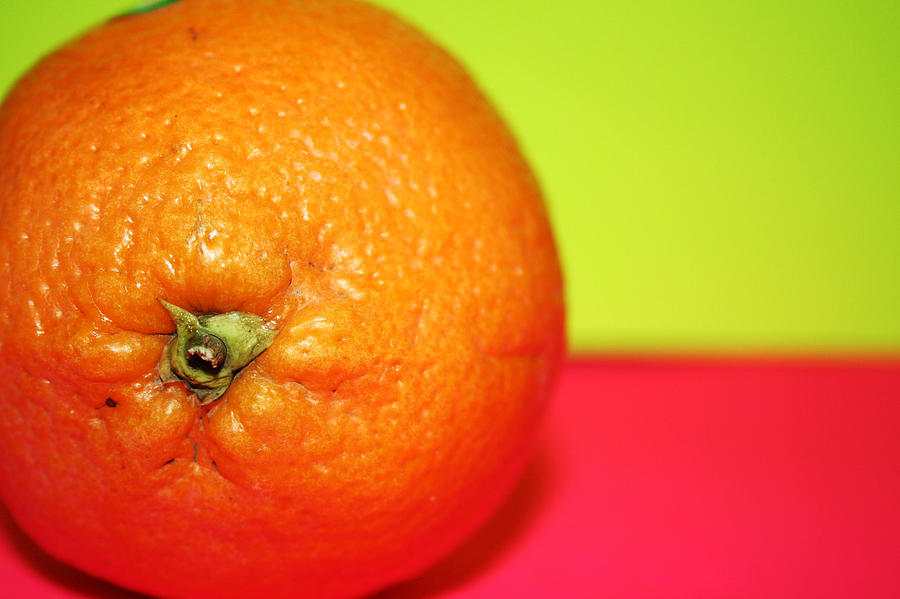 Oranges Photograph - Orange by Linda Sannuti