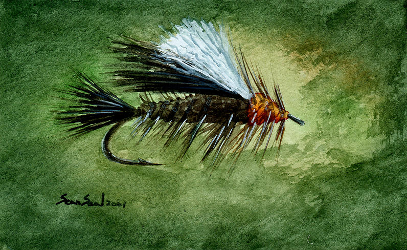 Fishing Fly Painting - Orange Stimulator by Sean Seal