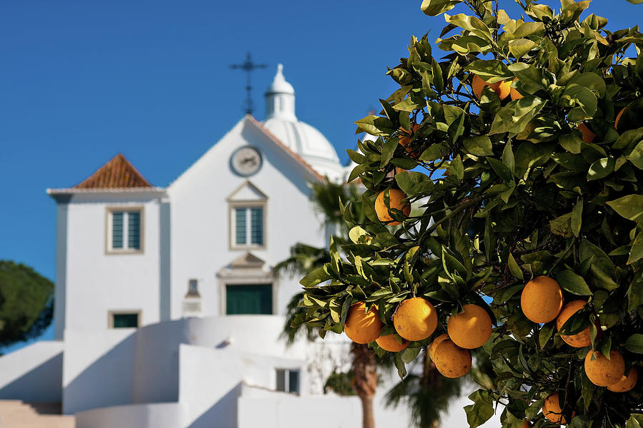 Orange Tree And Church - Castro Marim, Portugal Photograph