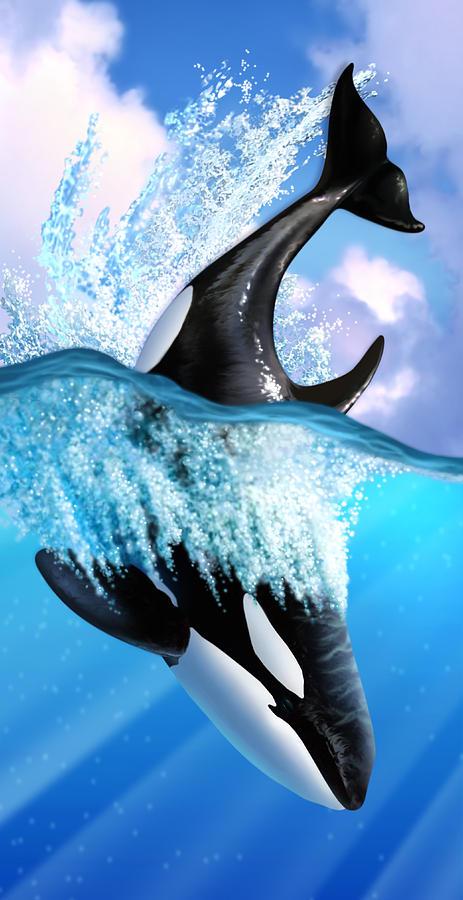 Killer Whale Digital Art - Orca 2 by Jerry LoFaro