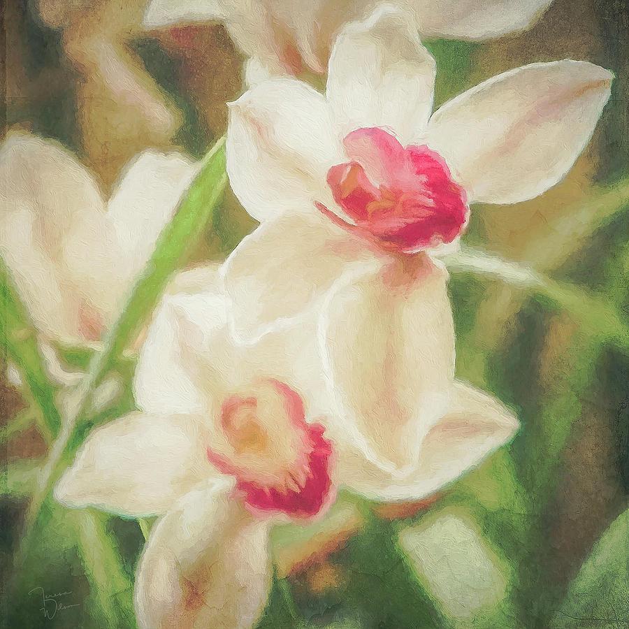 Orchid Garden Digital Art