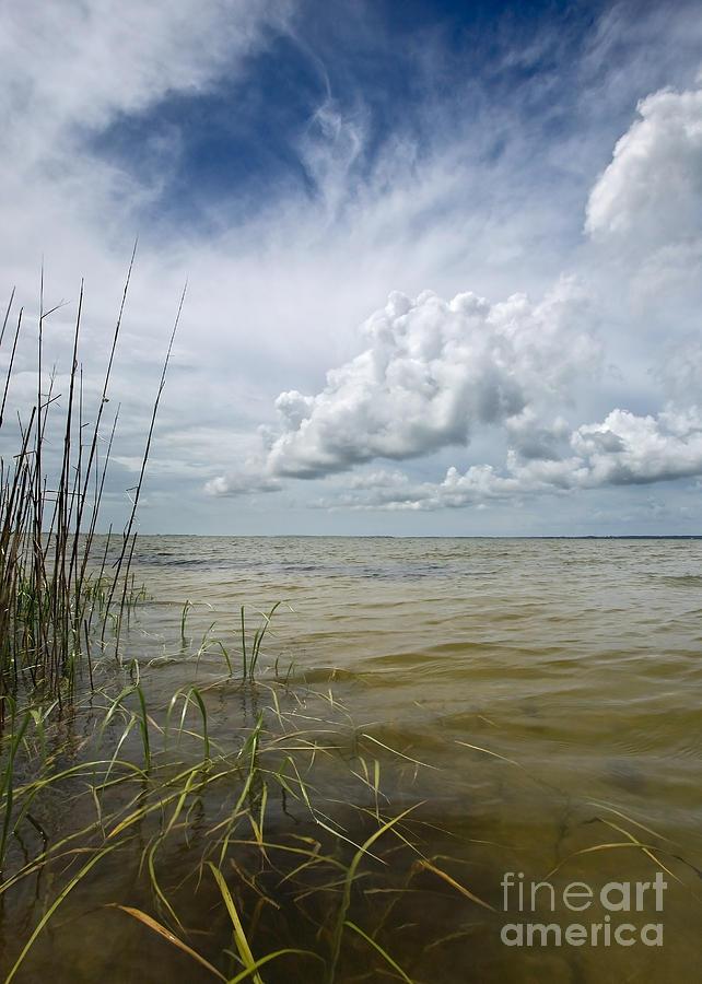 Water Photograph - Outer Banks Coastline by Matt Tilghman