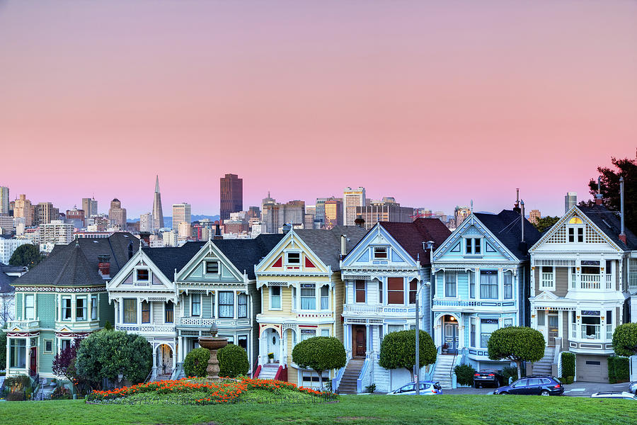 Painted Ladies At Dusk Photograph
