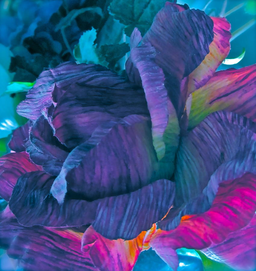 Silk Flower Digital Art - Painted Silk by Gwyn Newcombe