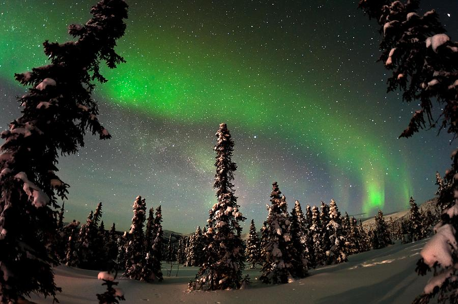 25 Below Photograph - Painting The Sky With The Northern Lights by Mike Berenson