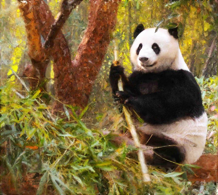 Panda Bear Painting By Alice Schear