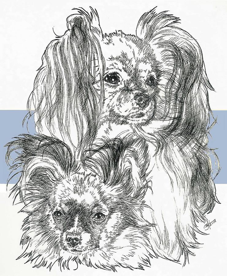 Papillon Father And Son Drawing