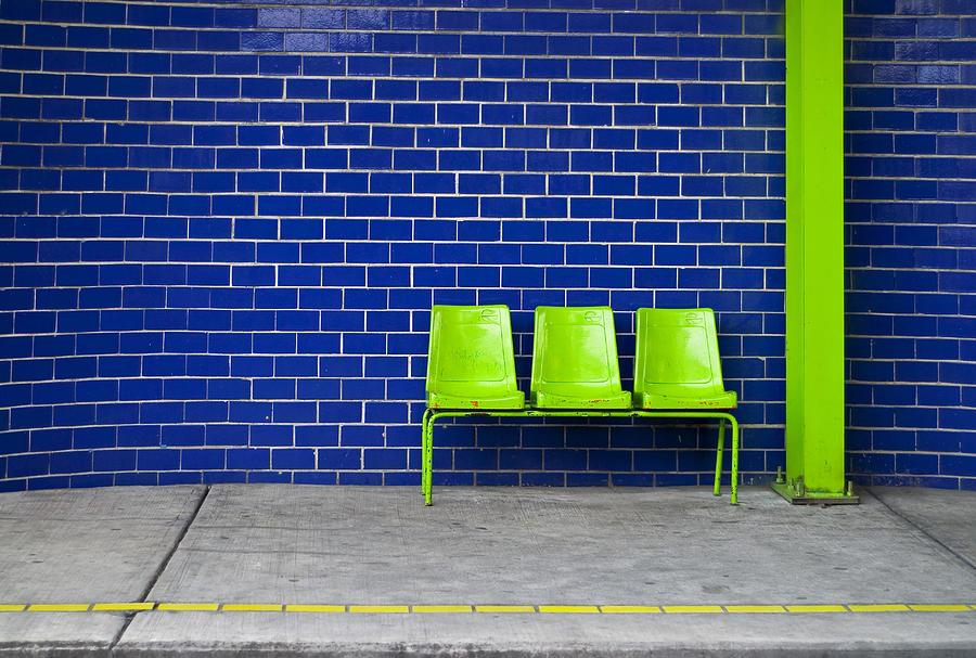 Green Photograph - Paradaxochi by Skip Hunt