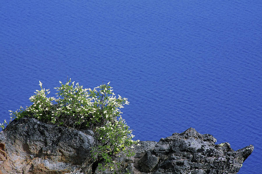 Peaceful Photograph - Paradise For Backpackers - Crater Lake In Crater National Park - Oregon by Christine Till