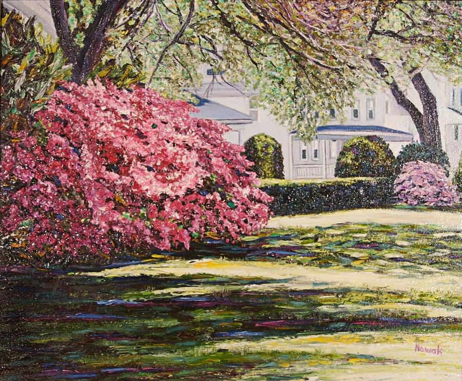 park spring blossom - photo #4