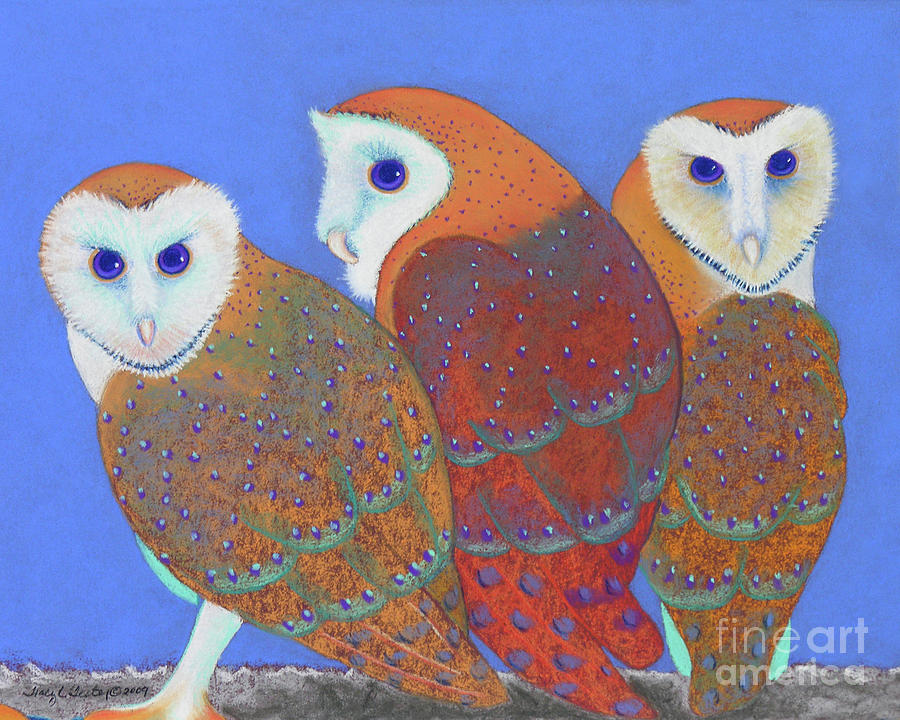Owl Pastel - Parliament Of Owls Detail 2 by Tracy L Teeter