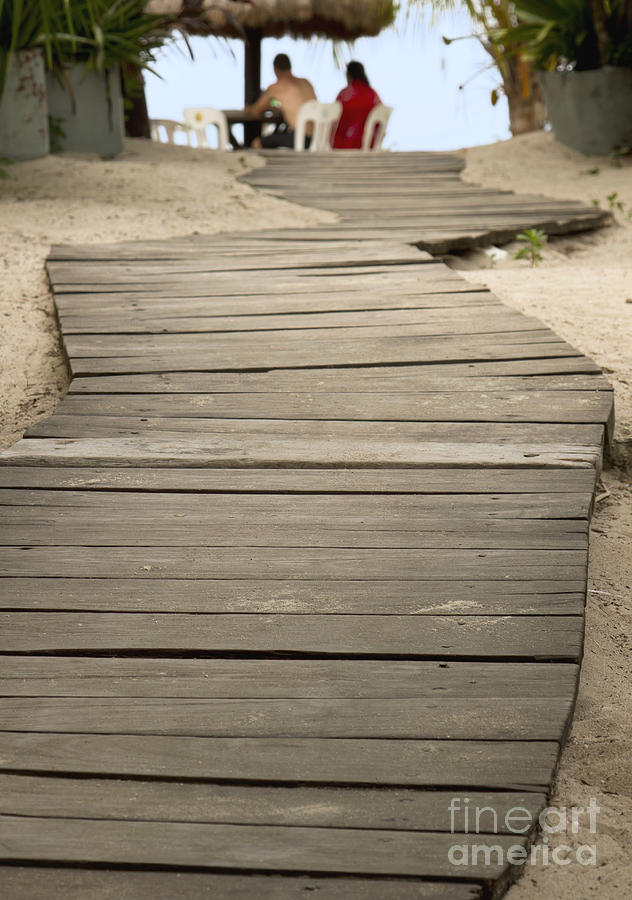 Beach Photograph - Path by Blink Images