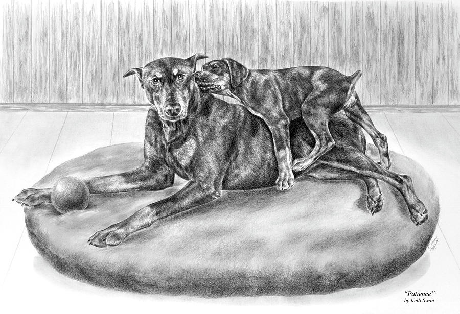 Patience - Doberman Pinscher And Puppy Print Drawing