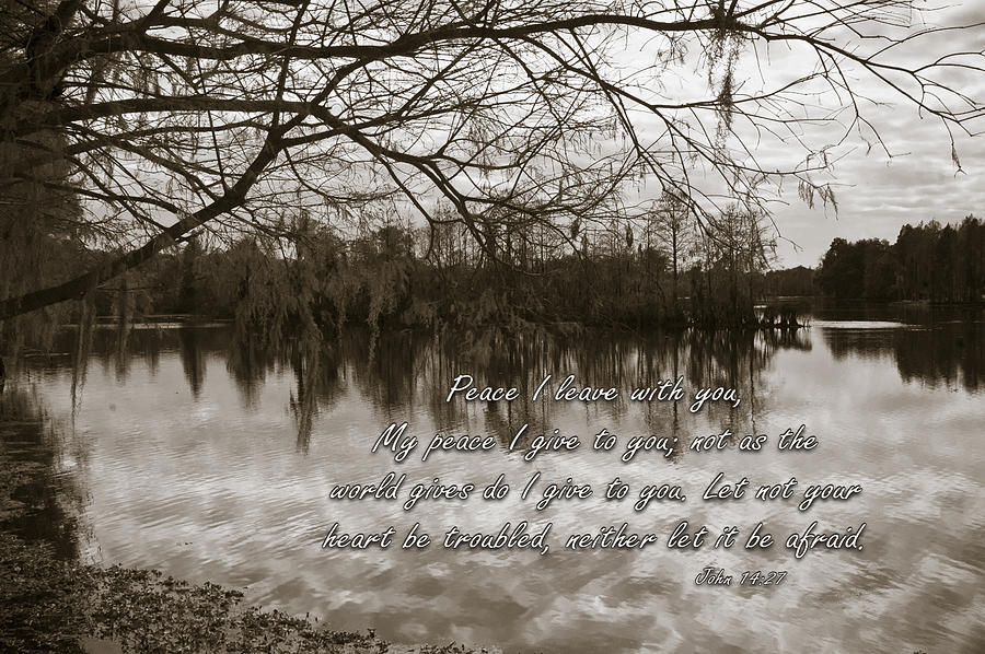 Landscape Photograph - Peace I Leave With You by Carolyn Marshall