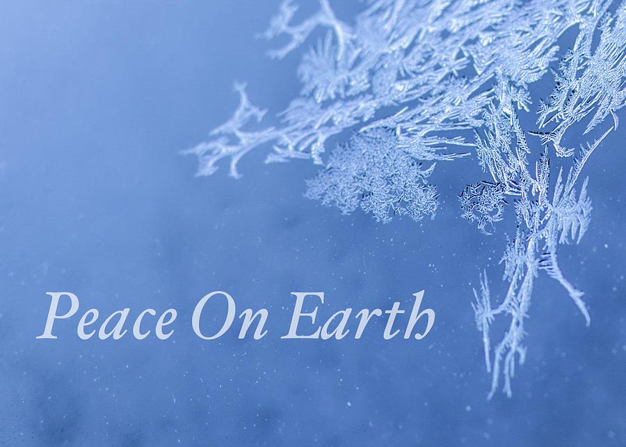 Christmas Card Photograph - Peace On Earth Christmas Card by Joy ...