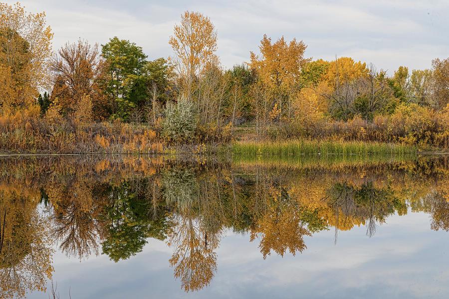 Peaceful Calm Autumn Afternoon Photograph
