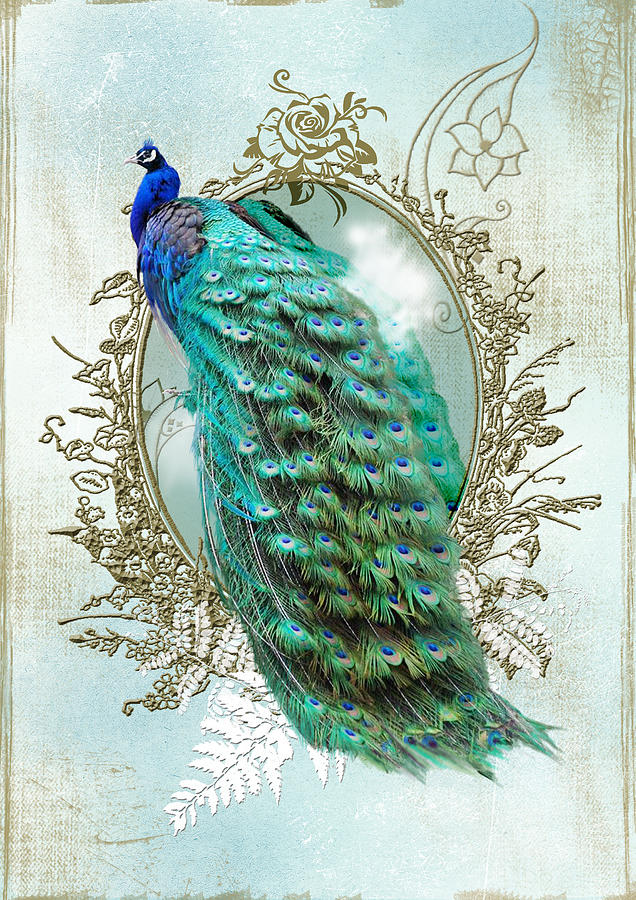 Peacock Turquoise Vintage Shabby Chic Digital Art By