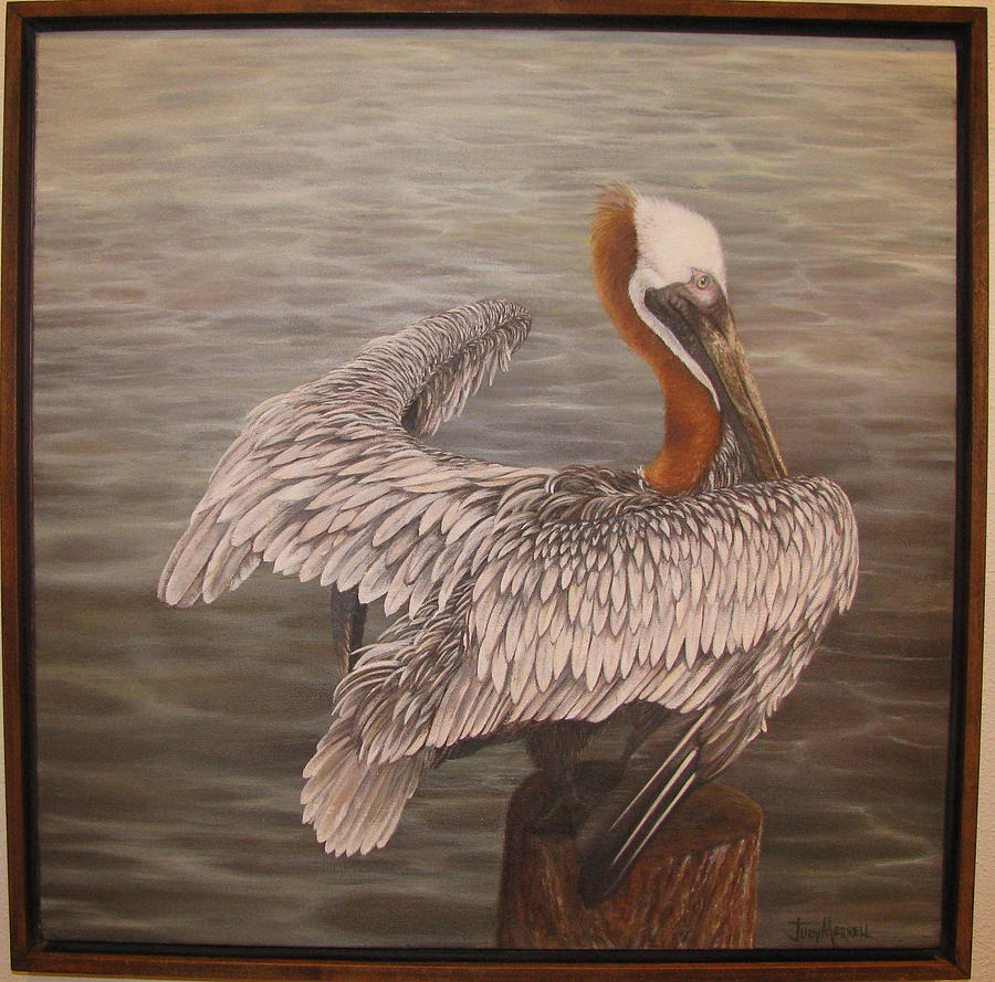 Pelican Painting - Pelican 3 Brown by Judy Merrell
