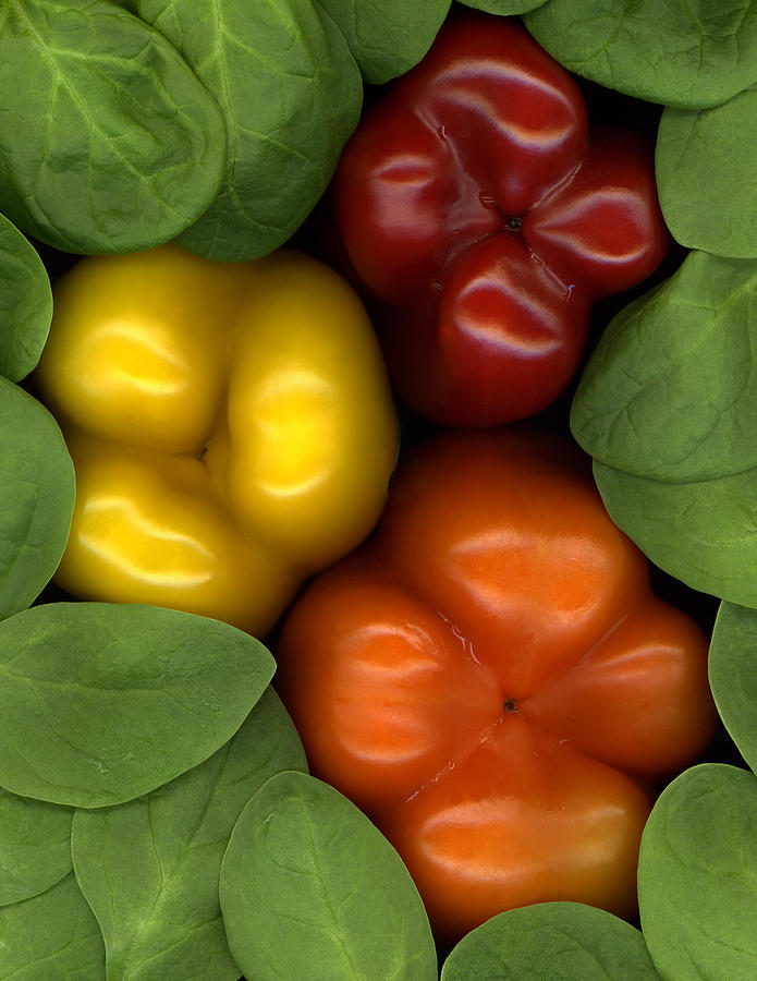 Fruit Photograph - Peppered Spinach by Marsha Tudor