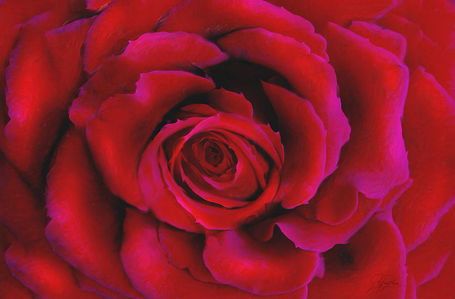 Perfect Rose Painting