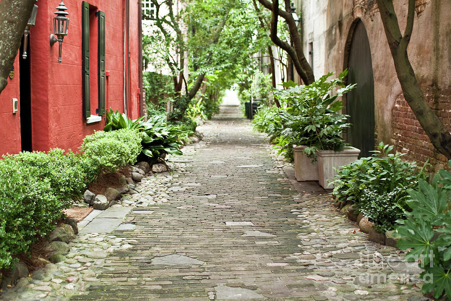 Philadelphia Alley Photograph - Philadelphia Alley Charleston Pathway by Dustin K Ryan