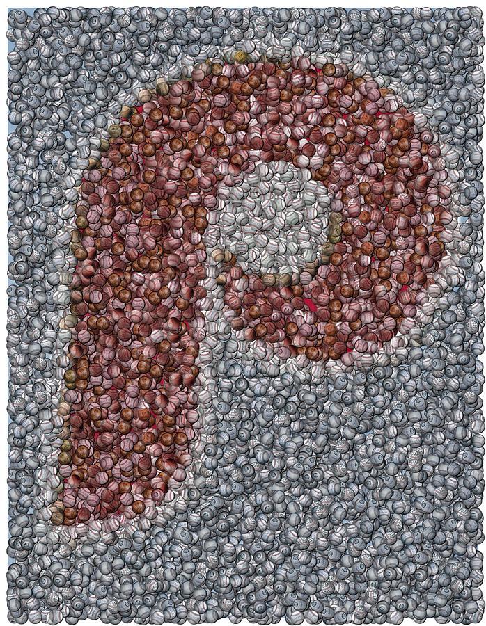 Mlb Mixed Media - Philidelphia Phillies Baseballs Mosaic by Paul Van Scott