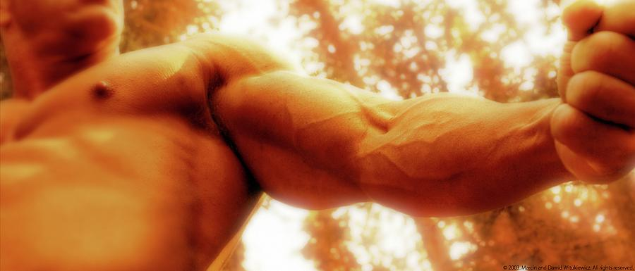 Muscle Photograph - Photo 13 by Marcin and Dawid Witukiewicz