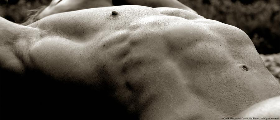 Muscle Photograph - Photo 4 by Marcin and Dawid Witukiewicz