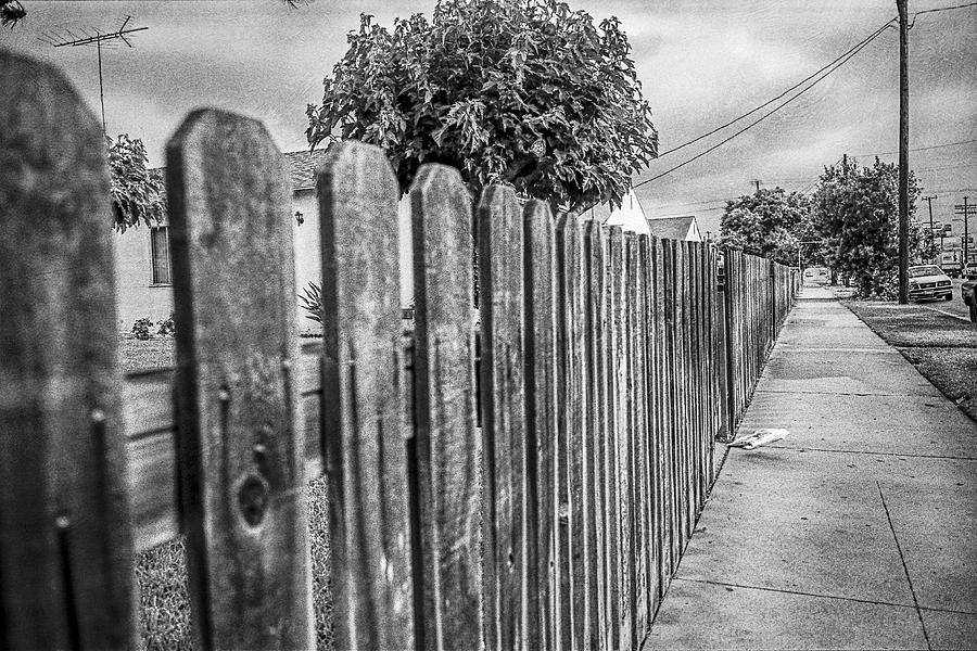 Picket Fence Along The Boulevard In Black And White Photograph