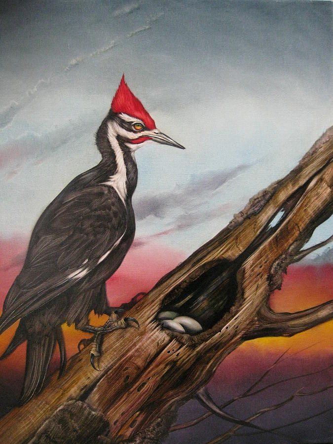 Bird Painting - Pileated Woodpecker by Martin Katon