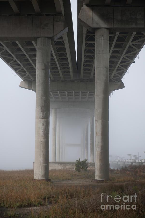 Pillars Of Fog Photograph