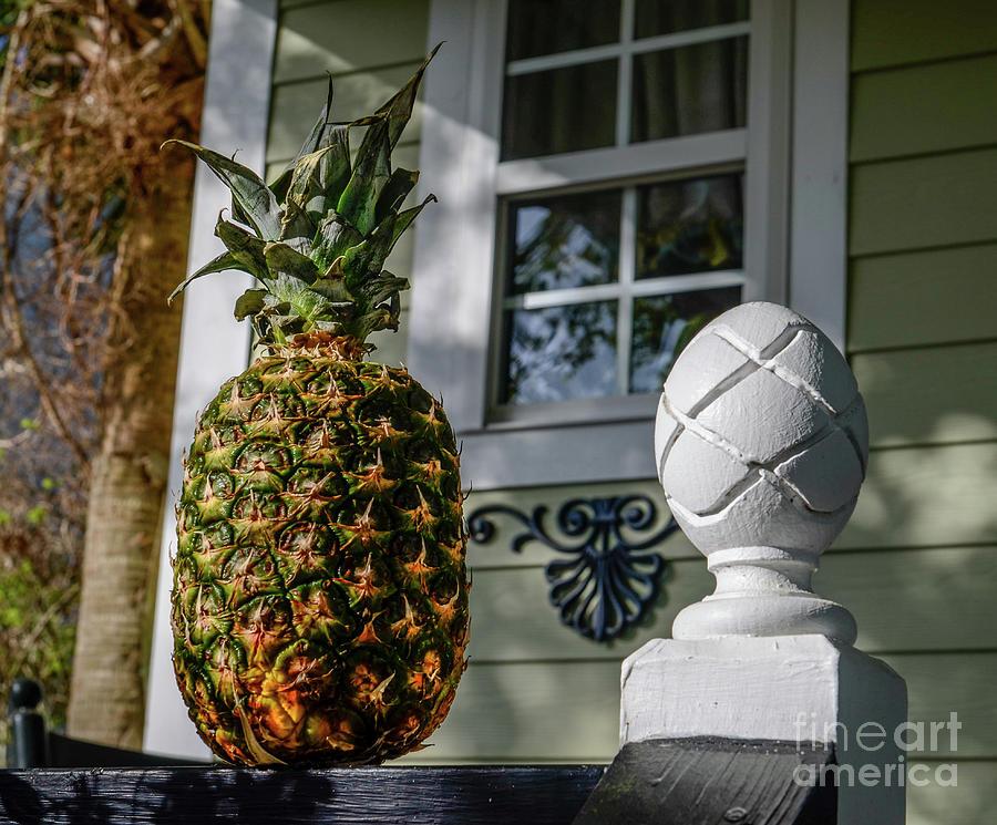 Pineapple Welcome Photograph