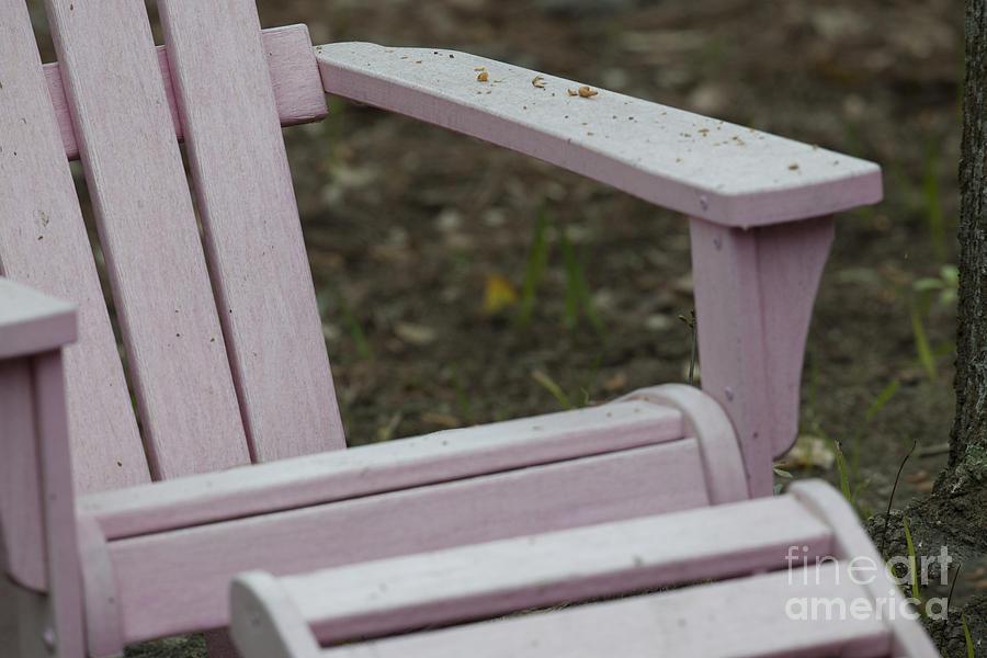 Pink Adirondack Photograph
