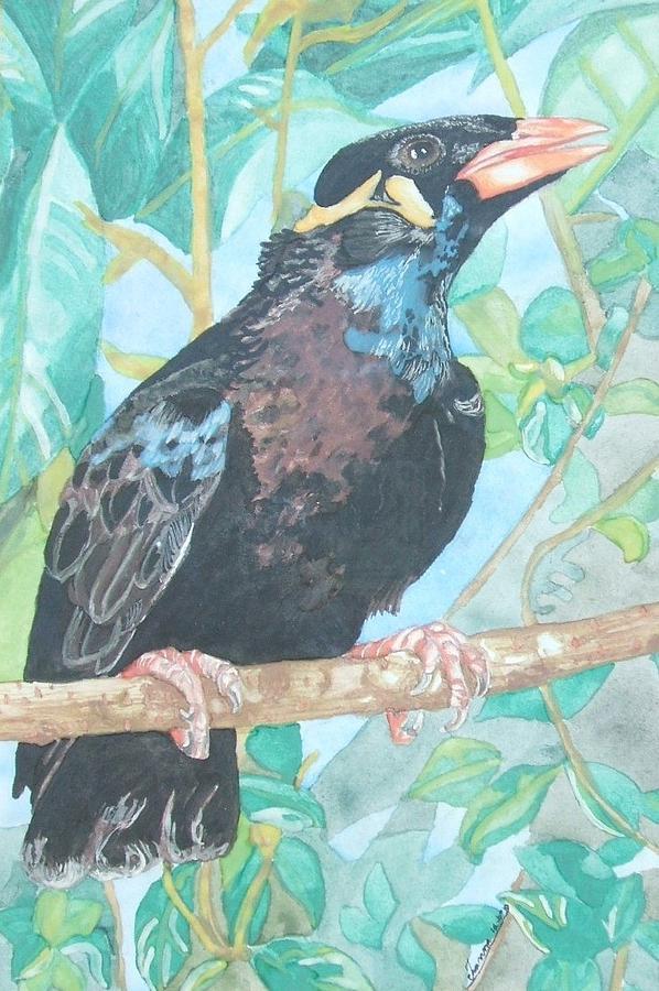 Bird Gracula Religiosa Mina Del Himalaya Black Negro Pluma Feather Ave Dios Tropical Garras Azul  Painting - Pio  Xvi by Arte Ivanna