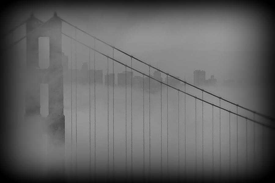 San Francisco Photograph - Play Misty For Me by Edward Kreis